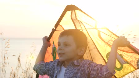 dreamy little boy holding colorful kite in the grass sunset, warm summer evening