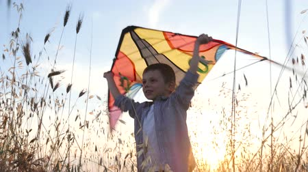 cheerful young boy holding colorful kite above his head standing in the grass at sunset, illuminated by sunlight warm summer evening