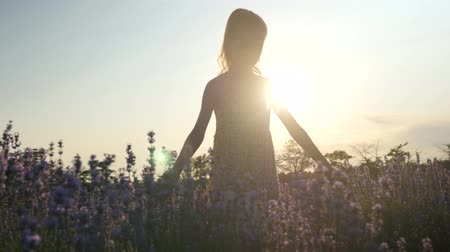 silhouette of a little girl walking in a field. outdoor activities. summer plants in Europe