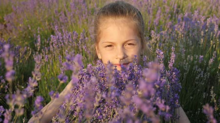 cute little girl plays lavender bushes in nature. During summer school vacations. flowers bloom in summer time season.