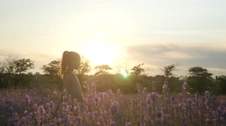 dreamy little girl walking outdoor at sunset. During summer school vacations. lavender field in flowering time.