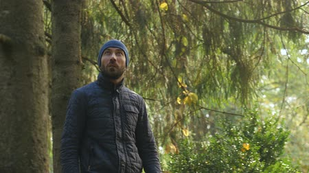 Caucasian man walks looking at forest. adventure human journey in woodland. untouched nature