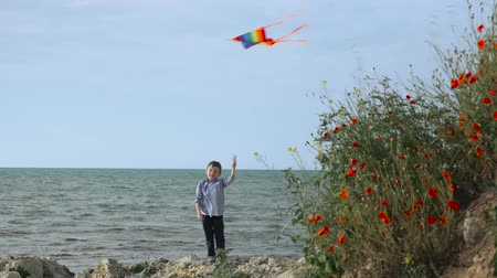 happy summer holidays little boy. flying colorful kite on the beach,