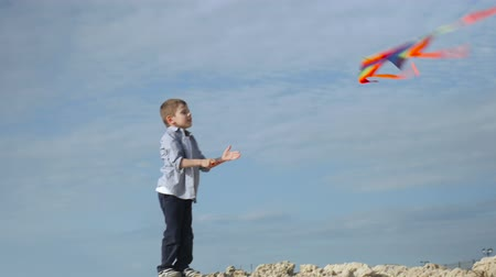 joyful childhood games. standing on a rocky beach, little boy controls kite flight Wideo
