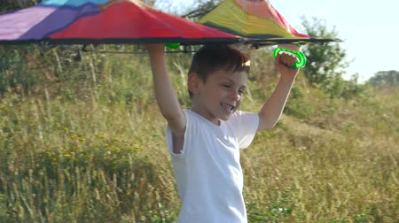 bochechudo : cheerful little boy is holding up a colorful kite above his head. game imagination flight of dreams. childrens health