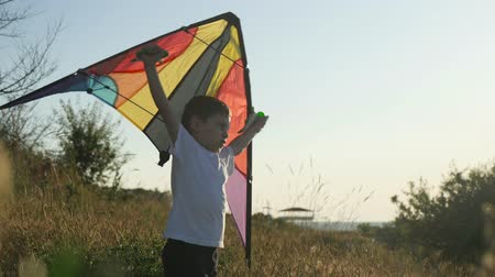 коршун : Happy kid playing with motley kite against summer landscape background. dream concept