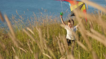 temper : landscape with high grass on seaside. little boy running along his arms. summer vacation Stock Footage