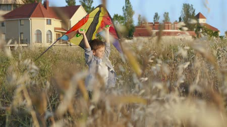 temper : playful cute little kid boy near his home playing to fly kite in his hands overhead sunny day