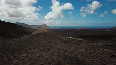 winemaking : Aerial panorama of Wine valley of La Geria, Lanzarote, Canary islands, Spain