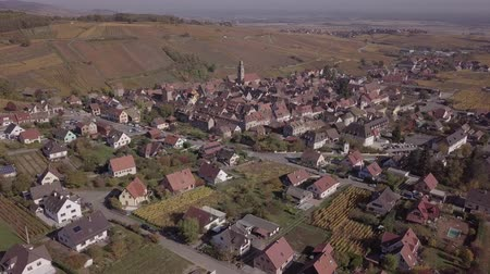 garden route : Aerial view of autumn Riquewihr vineyards, Alsace Wine Route, France. Original untouched LOG format.