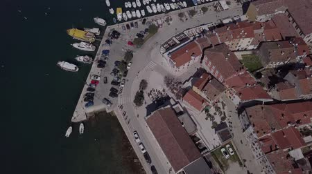 flying sea gull : Flight over harbor and old town Rovinj, Istria, Croatia. Original untouched LOG format. Stock Footage