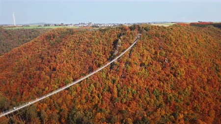 sıska : Aerial view of people walking on Suspension footbridge Geierlay (Hangeseilbrucke Geierlay), Germany. Stok Video