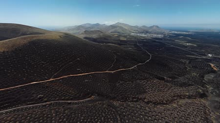 spaanse wijn : 360 degrees aerial panorama of Wine valley of La Geria, Lanzarote, Canary islands, Spain Stockvideo
