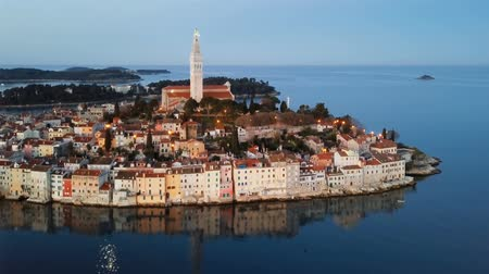 flying sea gull : Night flight around old town Rovinj, Istria, Croatia Stock Footage