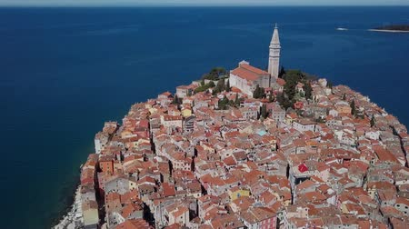 flying sea gull : Flight over harbor and old town Rovinj, Istria, Croatia.