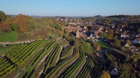 half timbered : Flight over Maulbronn old town and vineyards, Baden-Wurttemberg, Germany.