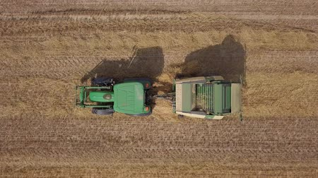 szénaboglya : Aerial top view of Hay baler tractor working on field Stock mozgókép