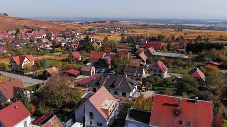 garden route : Aerial view of autumn Riquewihr vineyards, Alsace Wine Route, France. Stock Footage