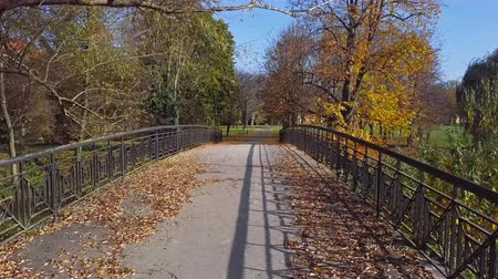 Low level flight over of the footpath and bridge inside sunny autumn park.