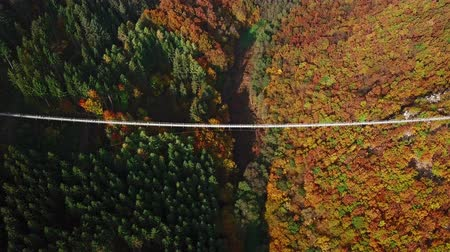 süspansiyon : Overhead aerial view of people walking on Suspension footbridge Geierlay (Hangeseilbrucke Geierlay), Germany. Stok Video