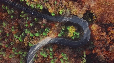navíjení : Overhead aerial view of winding mountain road in sunny autumn forest.