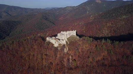 Словакия : Flight around ruined Uhrovec castle in autumn forest, Slovakia.
