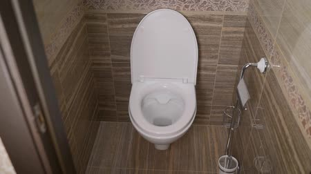 floş : Toilet bowl in the toilet. Toilet in the toilet, view from the top Stok Video