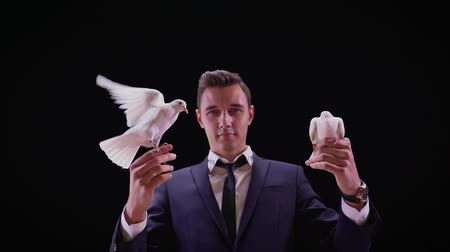 birds flying : Magician with pigeons. Shows focus with two white pigeons. Magician releases dove from hands, slow motion