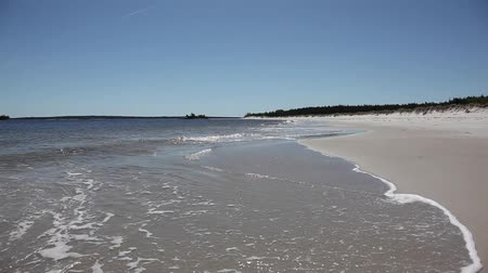 view of a white sandy beach with ocean in nova scotia