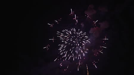 placeholder : slow motion video of beauty colored firework  scene at night Stock Footage