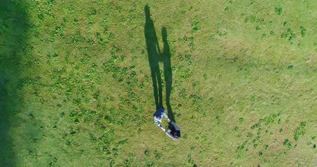 unmanned aircraft : aerial view of couple play on the grass