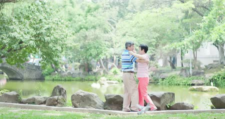 fulllength : old couple dancing at the park