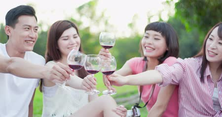 green grass : people smile happily, enjoying red wine at a picnic