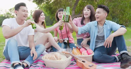 cheers : people enjoying beer on a picnic Stock Footage