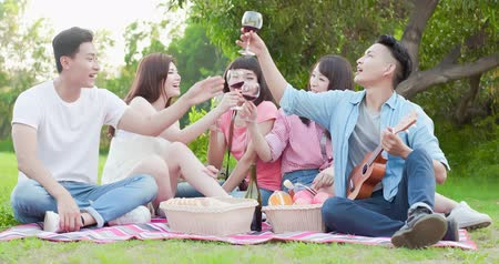 goblet : friends smile happily enjoying red wine at a picnic