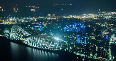 singapur : Gardens by the Bay, Singapore - July 25, 2018: Timelapse view of supertree Grove forest illuminated at night Stok Video