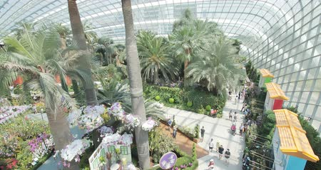 victoria : Flower dome, Singapore - July 24, 2018: Largest glass greenhouse in the world at Gardens by the Bay