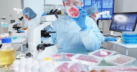denetleme : asian science team in food laboratory with meat samples on petri dishes Stok Video