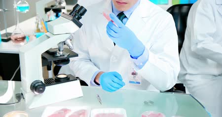 espécime : asian scientist team has researching about food safety in the laboratory