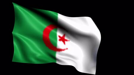 algeria : Algeria flag loop (Alpha Channel) Stock Footage