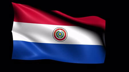 formato : Paraguay Flag Loop (Alpha Channel)