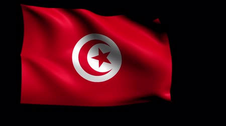 tunisia : The National Flag Loop (Alpha Channel)