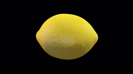 Lemon and fillet CG 10 seconds loop material
