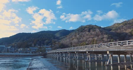kyoto : Japan, Kyoto, Ancient Capital, Arashiyama, Tourist Spot, River, Japanese Pine, Pine, Landscape, Nature, Superb View Stock Footage
