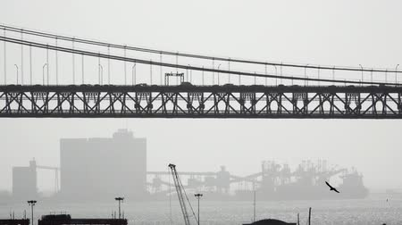 dark bay : Suspension bridge and traffic against port Stock Footage