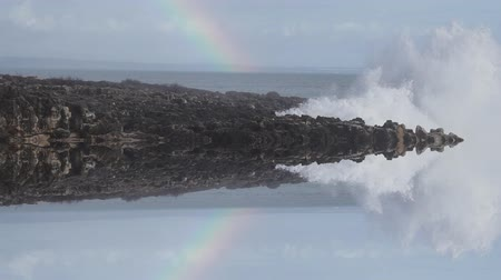 capa dura : Reflected wild waves breaking in the atlantic coast with rainbow in slow motion
