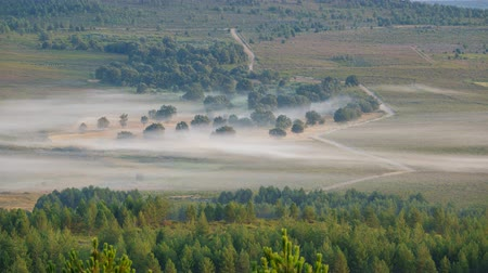 тишина : Zigzag track in the foggy morning, time-lapse