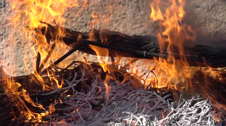 roston sült : Traditional calsots over the fire in super slow motion