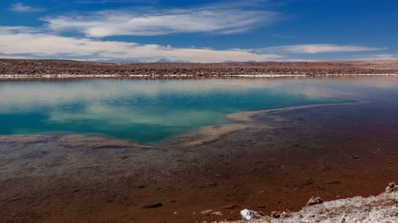 salt lagoon : Baltinache lagoon and Licancabur volcano in the background timelapse