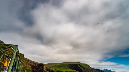 額 : Mykines island bridge time lapse with puffins flying